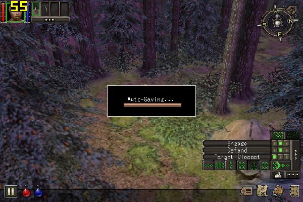 地牢围攻1(Dungeon Siege) 中文安装版截图4