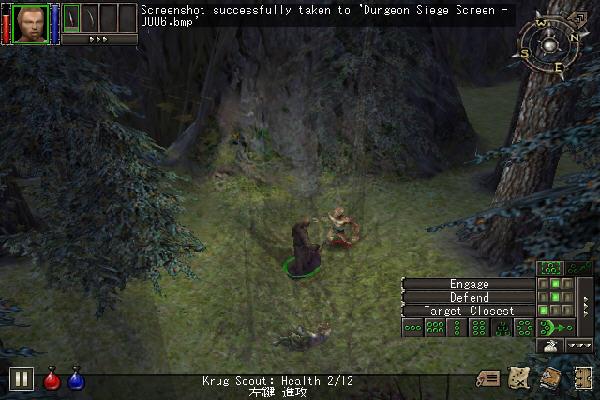 地牢围攻1(Dungeon Siege) 中文安装版截图0