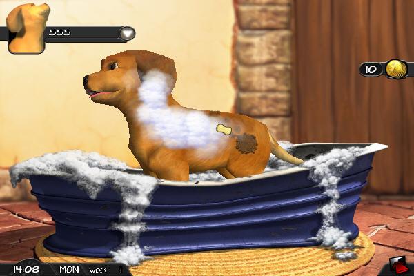 疯狂宠物(Fetch) 英文安装版截图3