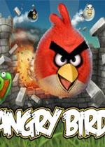 愤怒的小鸟 修改器
