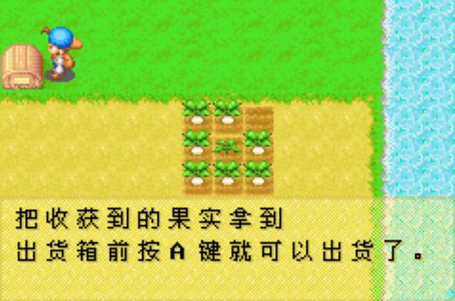 牧场物语-矿石镇的伙伴们汉化硬盘版截图2
