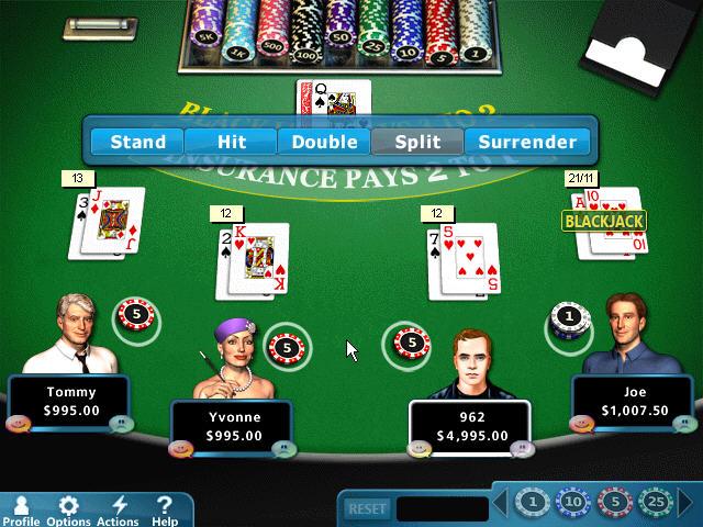 霍伊尔纸牌游戏2012(Hoyle Card Games 2012)完整硬盘版截图1