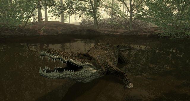 坎贝拉危险狩猎2013PC正式版截图4