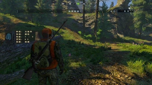 坎贝拉狩猎探险正式破解版截图1
