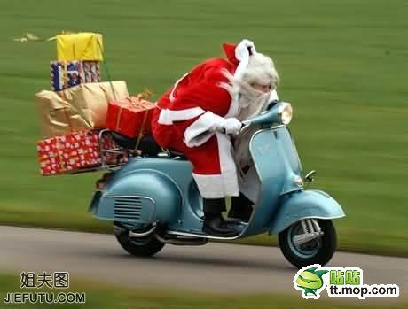 圣诞节搞笑图片喵星人圣诞老人萌爆了谢谢您可爱动态表情包图片
