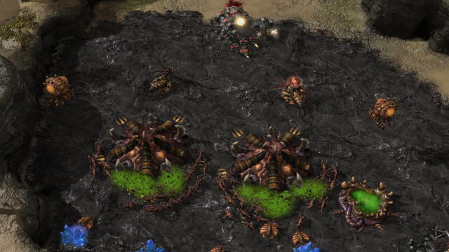 星际争霸2虫群之心PC破解版截图1