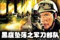 三角洲特种部队黑鹰坠落之-军刀部队(DELTA FORCE - TEAM SABRE)中文硬盘版
