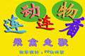 动物连连看V4.0 简体中文硬盘版