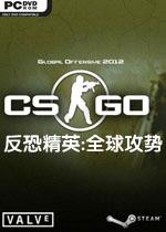 反恐精英:全球攻势/csgo