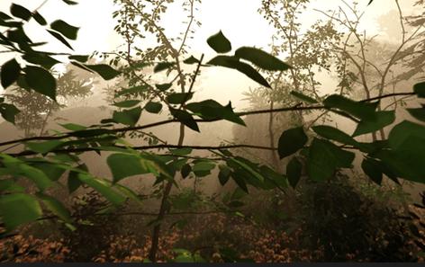 5月22日发售《森林TheForest》预告片公布