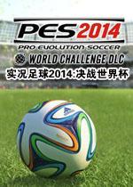 实况足球2014:决战世界杯