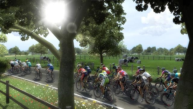 职业自行车队经理2014中文汉化版截图6