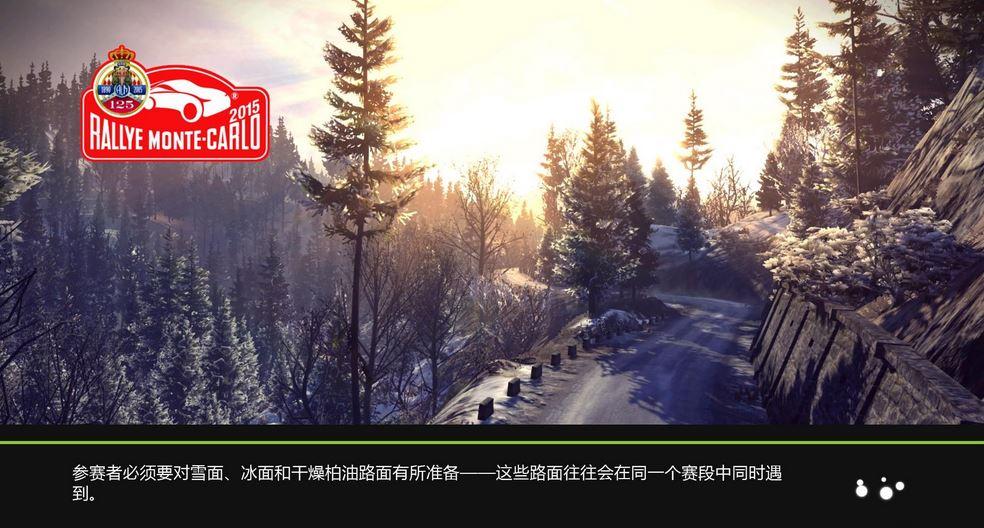 世界汽车拉力锦标赛5汉化中文版截图7