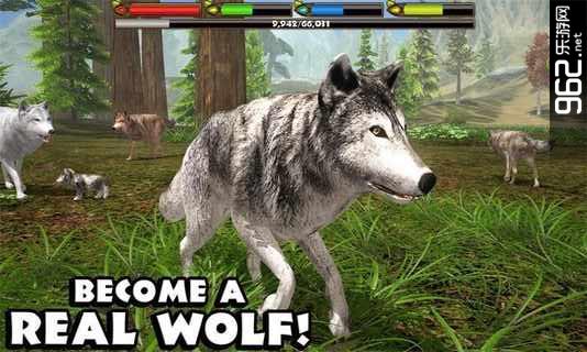 我的动物世界之我的野狼世界中文破解版