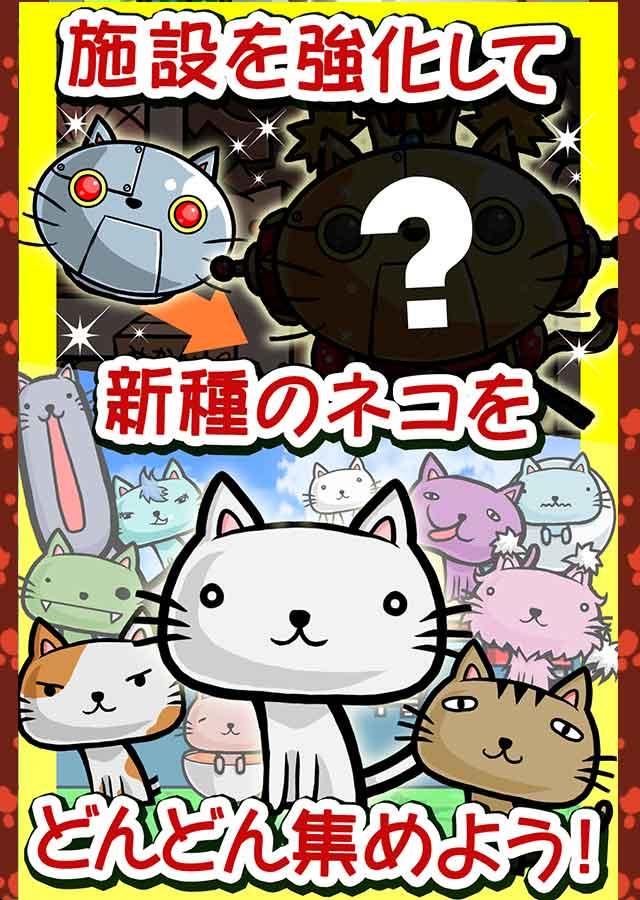 猫田汉化版v1.00.04截图3