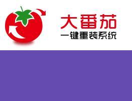 大番茄一键重装系统v1.5.1.1105