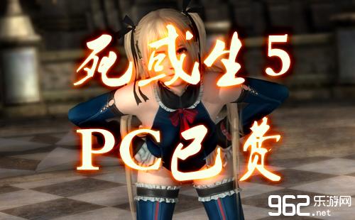 《死或生5》PC版已�U老引擎�人情何以堪啊