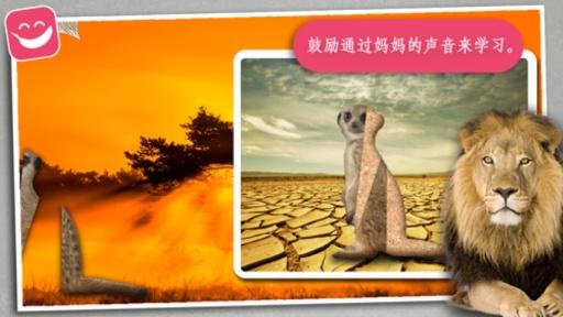 野生动物照片拼图 儿童亲子互动手游v1.0安卓版截图2