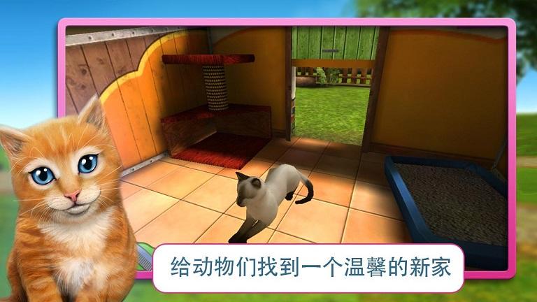 为可爱的猫,狗,兔子和其他小宠物寻找新家