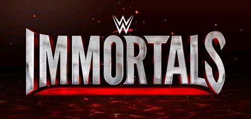 WWE不朽战神2破解版v1.3.1截图5