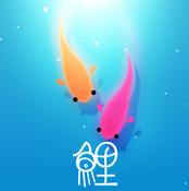 鲤 ios官网版