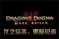 龙之信条:黑暗觉者PC破解版