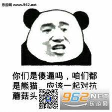 熊猫蘑菇头拿对讲机表情包图片