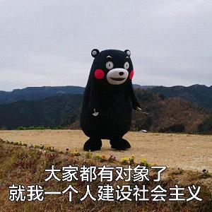 熊本熊大全表情v大全信图片大全图片表情包微小图片图片