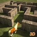 小马闯迷宫3D破解版