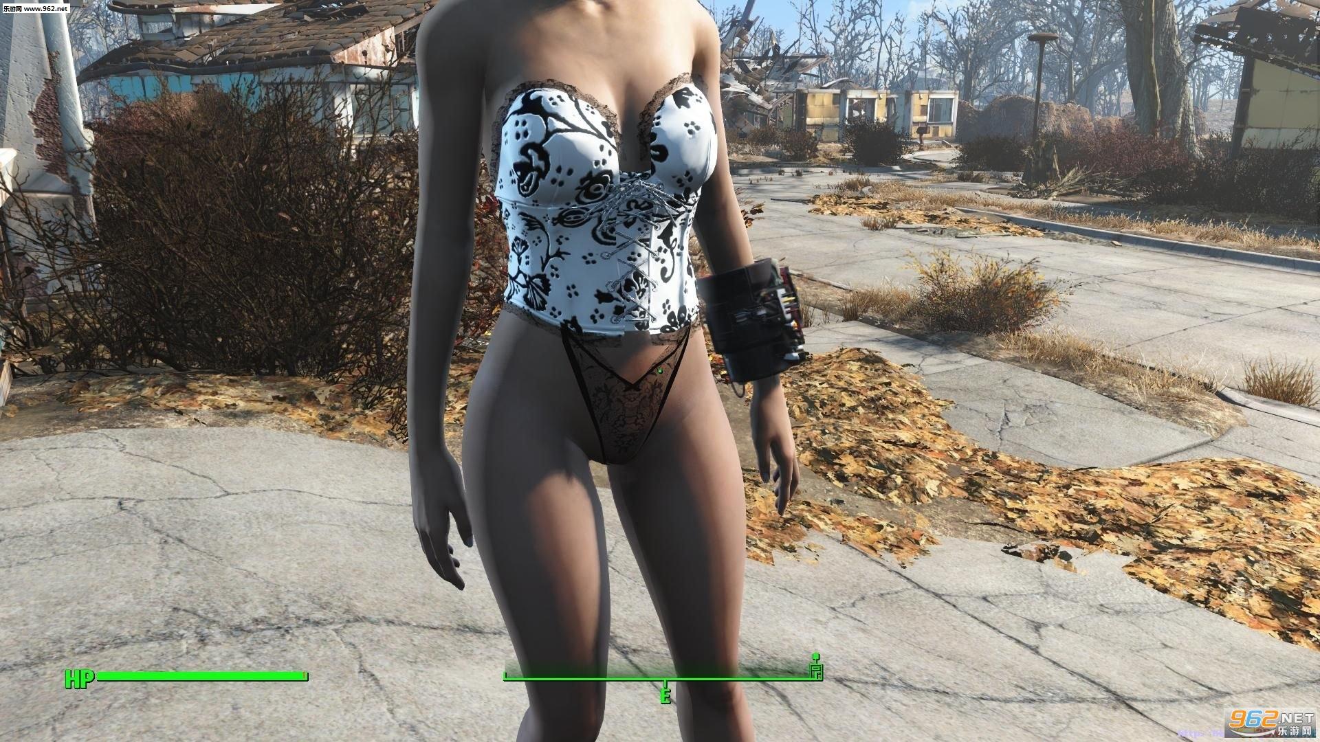 辐射4性感内衣合集|辐射4邪恶mod下载-乐游网游戏下载
