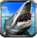 鲨鱼猎人3D破解版