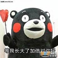 熊本熊母亲节系列表情包 母亲节妈妈您辛苦了系列表情图片