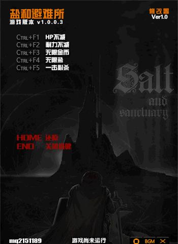 盐和避难所修改器+5