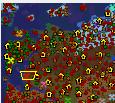 魔兽地图 骑马与砍杀1.6诅咒降临(含隐藏英雄密码攻略)