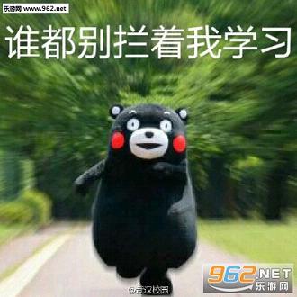 可爱的熊本熊打造的搞笑表情包