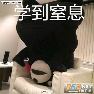 熊本熊v就是就是有钱a就是表情包表情图片