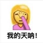 ios10最新emoji捂脸魔性表情包带字完整版图片