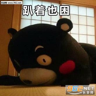 qq头像熊本熊可爱呆萌