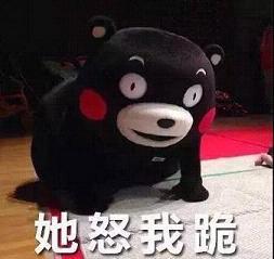 放假在家不被妈妈嫌弃之熊本熊搞笑表情包图片