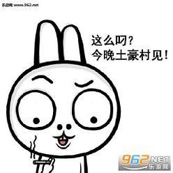 兔子凹凹微信表情下载_表情来试试表情包凹凹兔子|