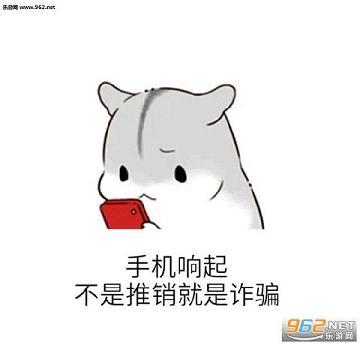 小仓鼠小马大全单身狗版下载_a小马成狗的表情图搞笑彪图片