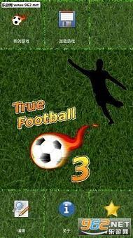 真实足球经理3完整汉化版(绿茵汉化)_截图0
