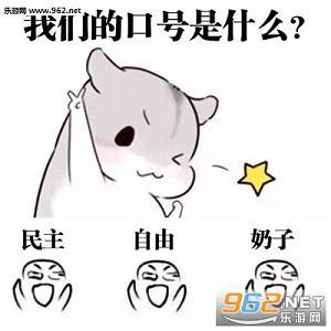 先定一个小仓鼠目标图片动画 hamham表情小目蛋疼仓鼠表情包图片图片