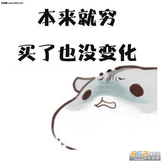 hamham游网买买买表情下载-乐仓鼠游戏下的搞笑图片桂圆图片