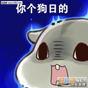 小仓鼠版做我男朋友吧表情包下载 乐游网游戏下载原创 搜搜看 www.