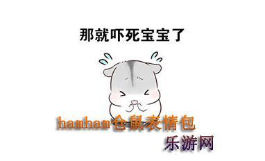 hamham仓鼠表情包老公版图片