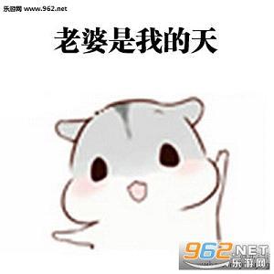 hamham仓鼠表情包老公图片 hamham仓鼠哄老婆表情包下载 乐游网游戏下载