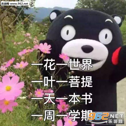 熊本熊期末v表情表情秦川rua表情包图片