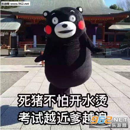熊本熊期末v表情表情可爱表情包不开心图片