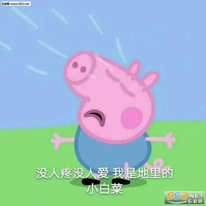 网络一线牵珍惜这段缘小猪佩奇表情包带字